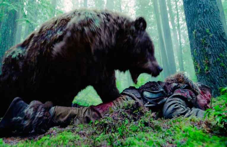 ataque oso