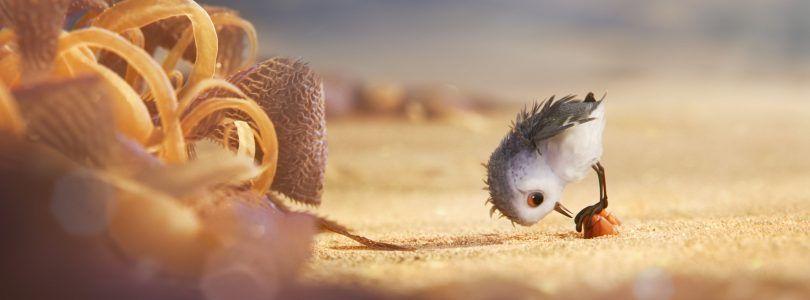 24 segundos con 'Piper', nuestro nuevo amigo de Pixar