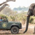 'Safari por Navidad' (Netflix) |Navidad en MagaZinema
